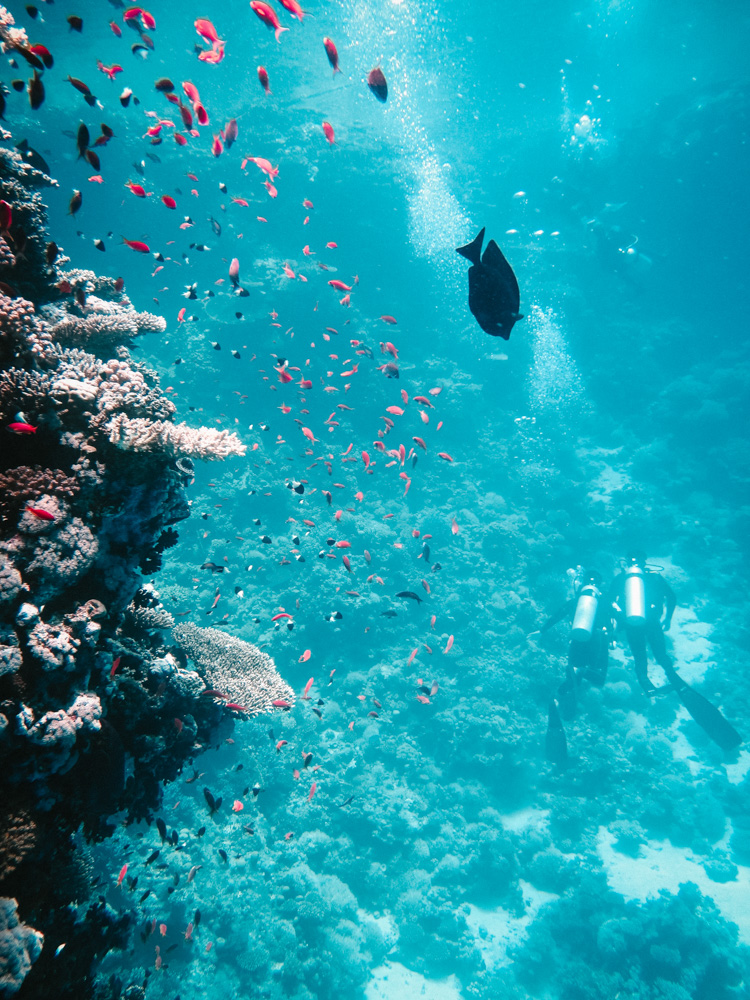 nachher-underwater-film-6