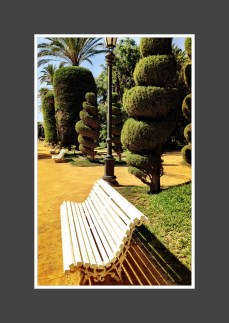 A bench in Cadiz, Spain