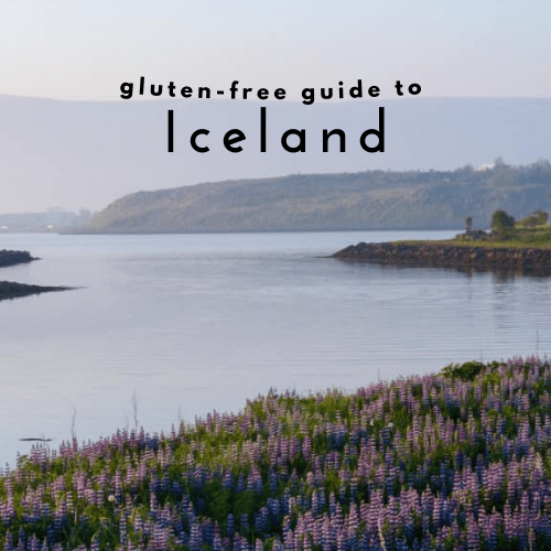 Gluten-free Iceland: A Celiac Travel Guide to Iceland