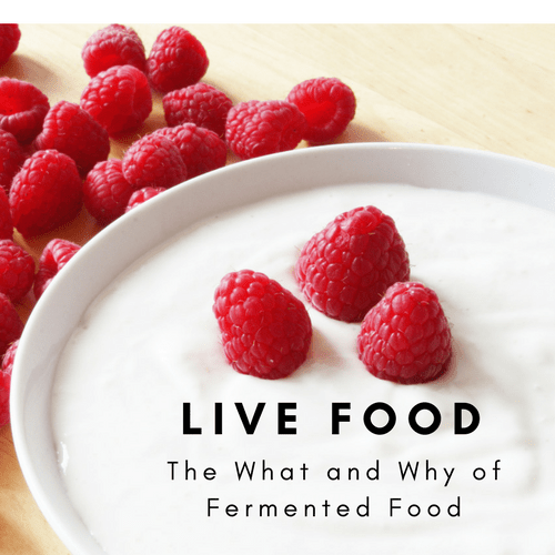 The What and Why of Fermented Foods