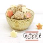 Raw Grain-Free Apple Pie Bliss Bites - Tayler Silfverduk DTR - #applepiesnack #glutenfreesnacks #blissbites #energybites #glutenfreeenergybites #glutenfreeblissbites #paleoblissballs #paleoblissbites #noaddedsugar #veganeasysnack #glutenfreeeasysnack #applepie #applespice #spicedapple #blissballs #energybites #glutenfreesnackrecipe #nationalapplepieday #applepieday #dietetics #celiacdietitian