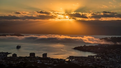 From Wrights Hill, Wellington