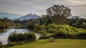 New Zealand scene