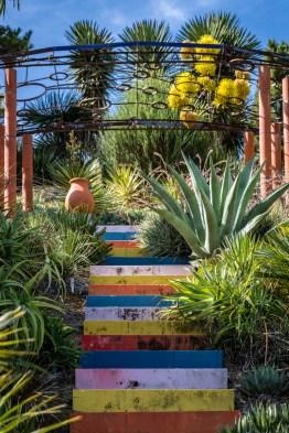 New Zealand garden of distinction