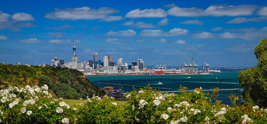 Auckland Skyline from Bastion Point