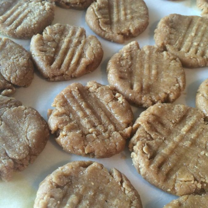 No-Bake Protein Peanut Butter Cookies