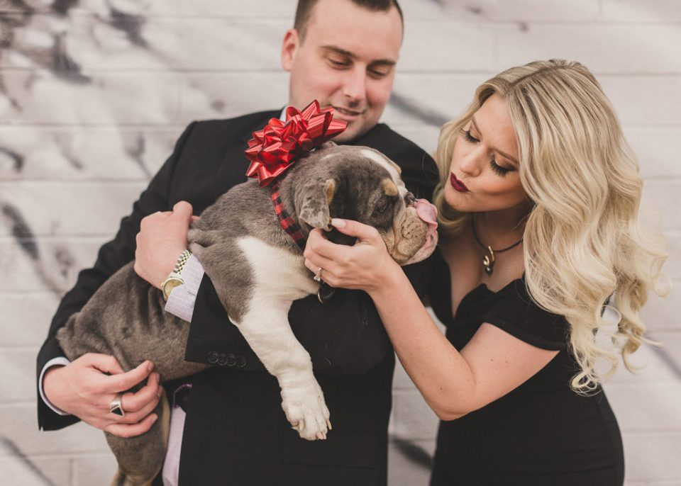 family portraits with new puppy photographed by Taylor Made Photography