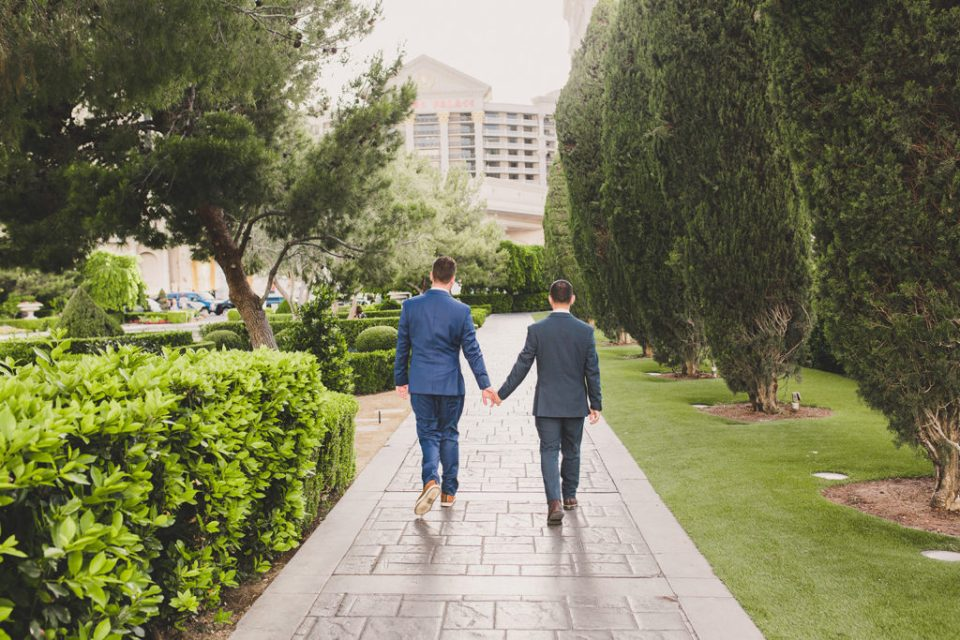 couple walks through Las Vegas gardens photographed by Taylor Made Photography