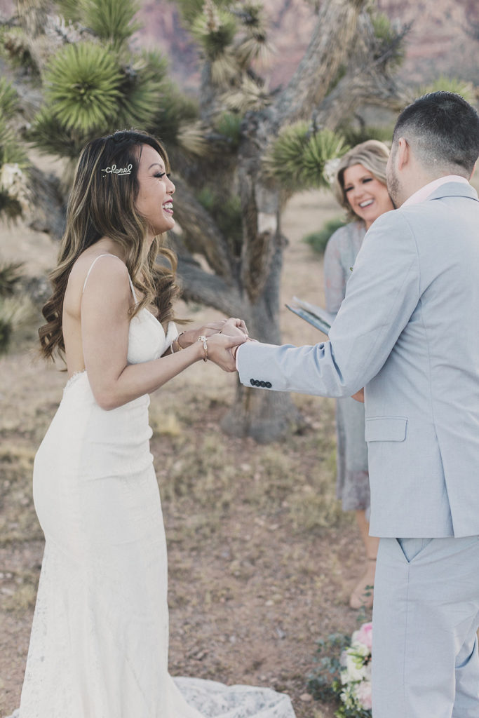 Taylor Made Photography photographs Red Rock Canyon elopement