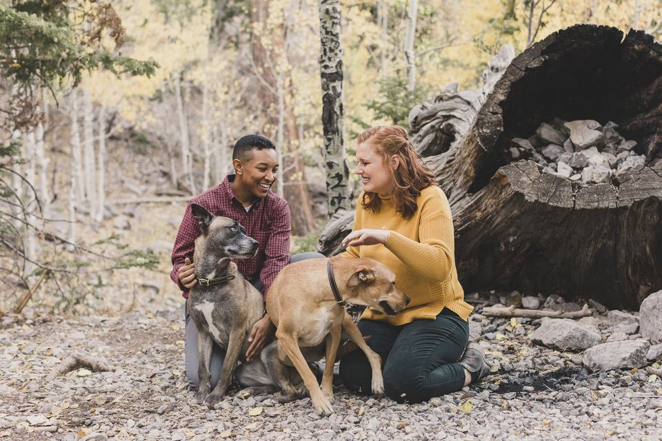 fall family photos in leaves with dogs at Mt Charleston