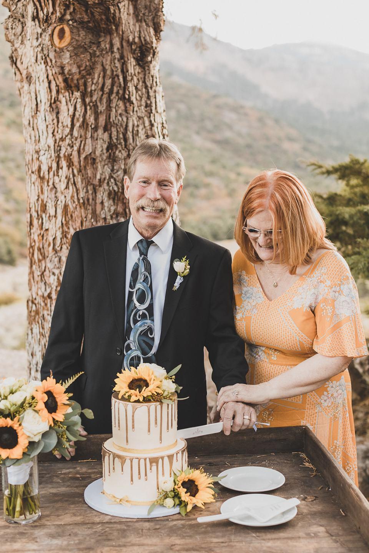 bride and groom cut cake during Mt Charleston Lodge Microwedding reception