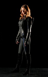 rs_634x1024-141022073441-634.Marvel-Agents-Of-SHIELD-Adrianne-Palicki.jl.102214