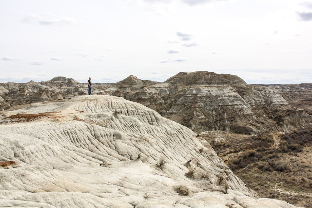 The Beauty of Dinosaur Provincial Park in Alberta