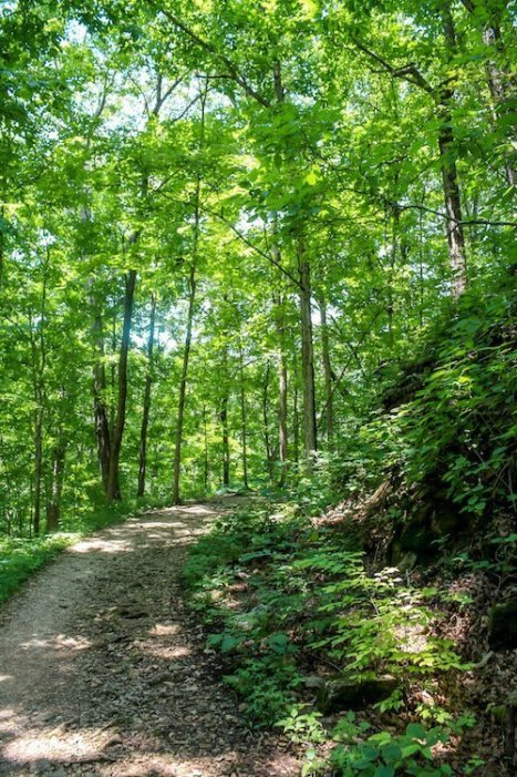Hiking to Tioga Falls in Radcliff, Kentucky