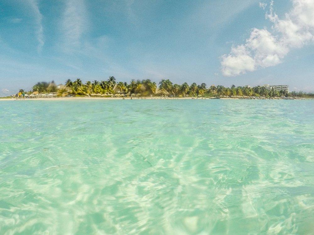 Desert Island Must-Haves