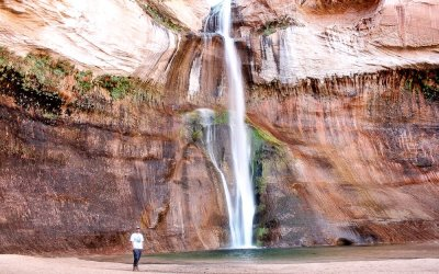A Hiking Guide to Utah's Lower Calf Creek Falls Trail