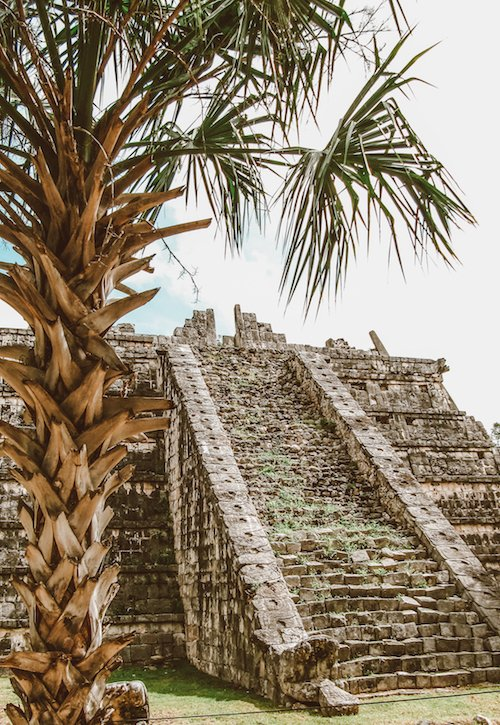 A tree stands in front of ancient ruins at Chichen Itza