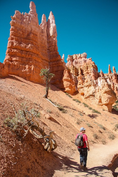A man walks among red rock Hoodoos in Bryce Canyon National Park
