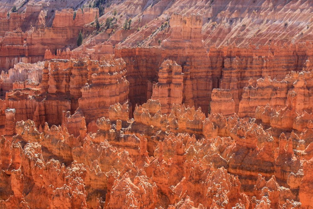 An aerial view of Bryce Canyon's hoodoos taken from the Rim Trail