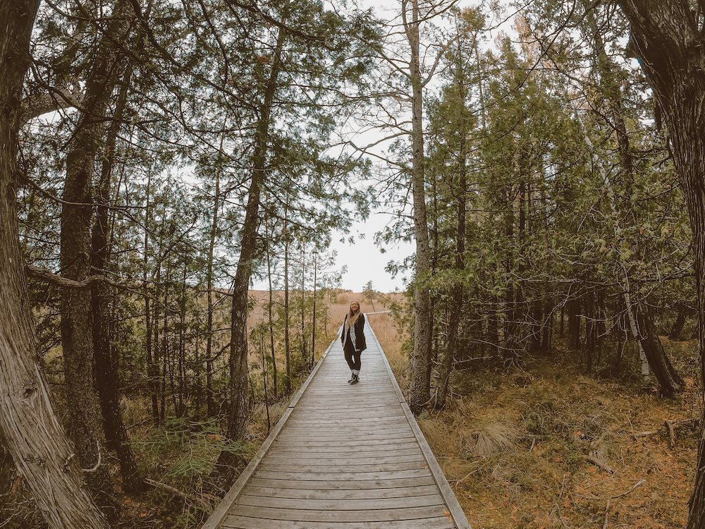 Taylor stands on a boardwalk among trees at Brokenhead Wetlands in Manitoba, Canada