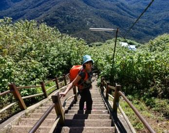 Steep steps, many steep steps