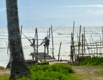 Stilt fisherman at Ahangama