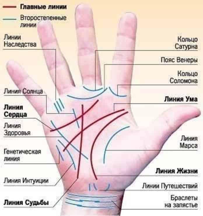 тартар очень знаки на руке значение фото толкование почувствуете, сколько тепла