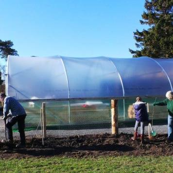 Teresa and Andrew planting trees next to the polytunnel