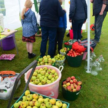 A photo of containers filled with apples and a huddle of people over the juicing equipment