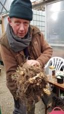 A photo of Peter holding a crop of tuberous nasturtiums