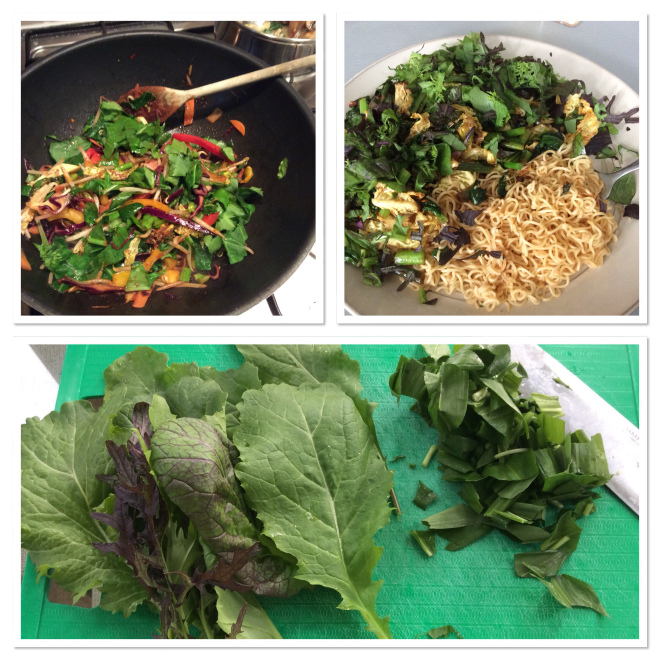 A photo of dishes prepared with Green Leaves from Tayport Community Garden