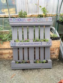 Shona and Stuart's weeding pallet garden