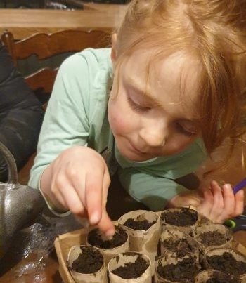 Photo of child sowing cucumber seeds