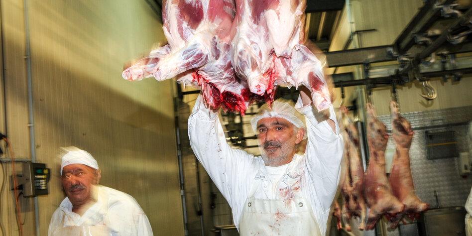 https taz de halal fleisch trotz betaeubung 5619397