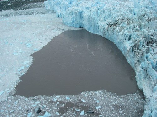 Subglacial discharge upwells at the terminus of Yahtse Glacier