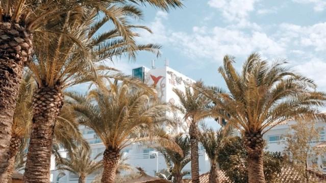 Music returns to Ibiza as Ushuaïa Ibiza presents Palmarama