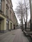 Trees along Rustaveli