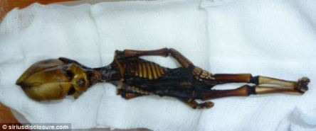 The humanoid was first discovered in 2003 in the remote Atacama desert region of Chile
