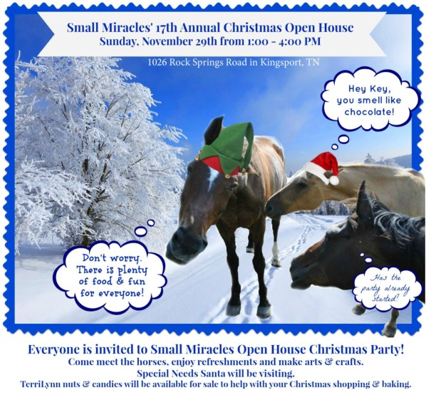 Small Miracles Christmas Open H