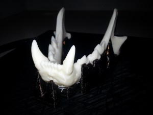 3D Printed Bobcat jaw