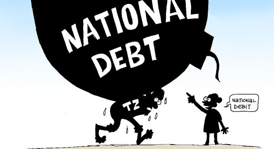 DEVELOPMENT ORGANISATION WARN OF DEBT CRISIS