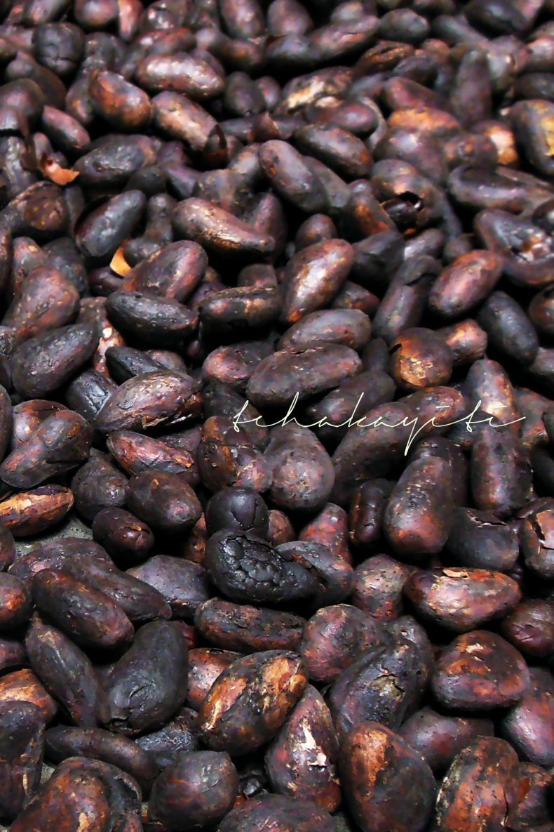 Believe it or not, these are roasted cocoa beans, the first step in the chocolate making process. | tchakayiti.com