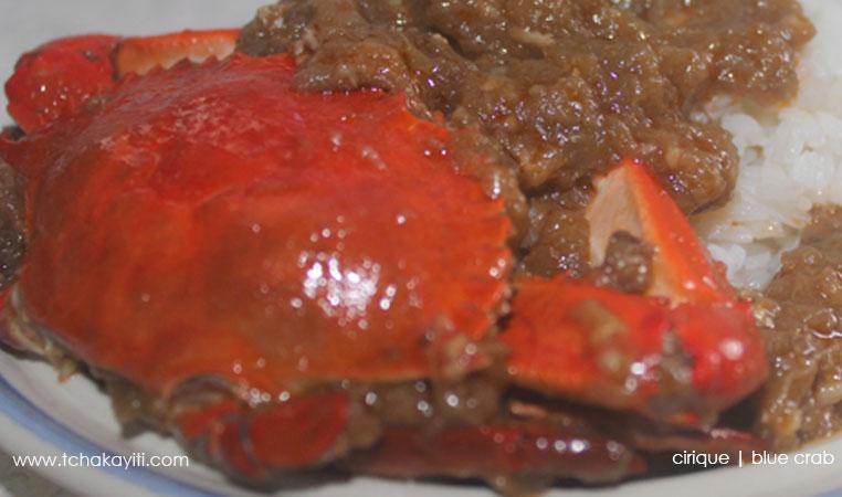 cirique-crab-haiti