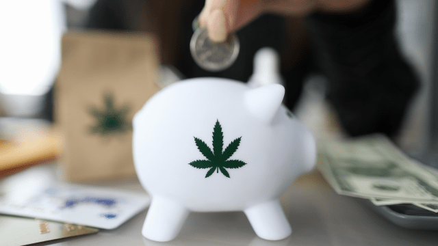 """Breaking Into The """"Cannabiz"""" — Four Essential Tips For New Cannabis Entrepreneurs"""