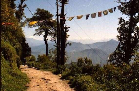Darjeeling – Part 2