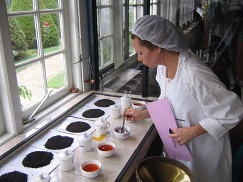 Combining tea and coaching to help women entrepreneurs succeed