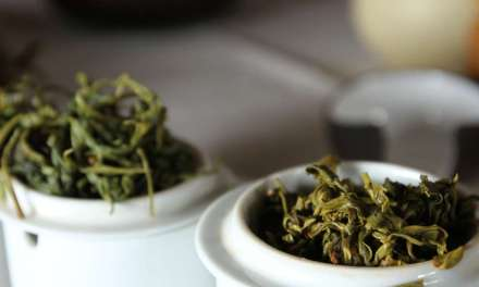 U.S.-grown teas – Exploring a new frontier with James Norwood Pratt