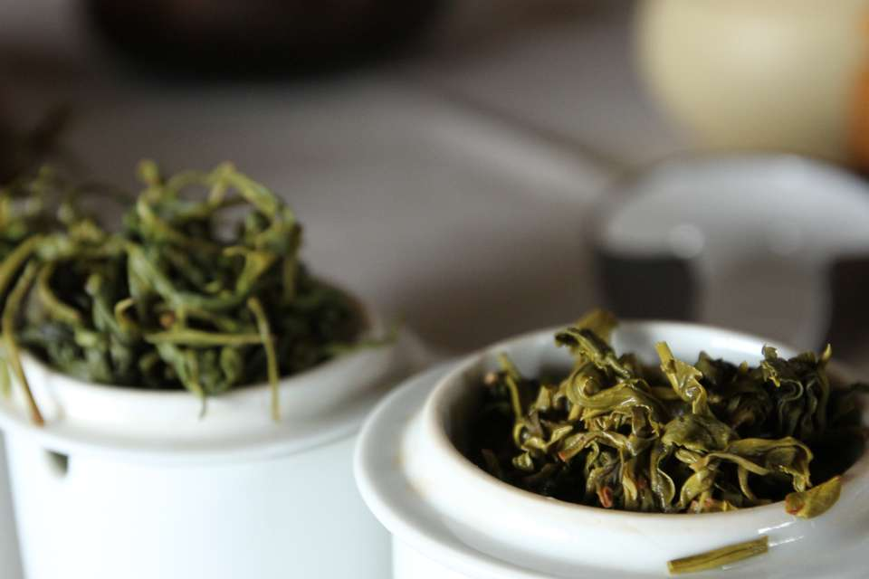 U.S.-grown teas – Exploring a new frontier with James Norwood Pratt