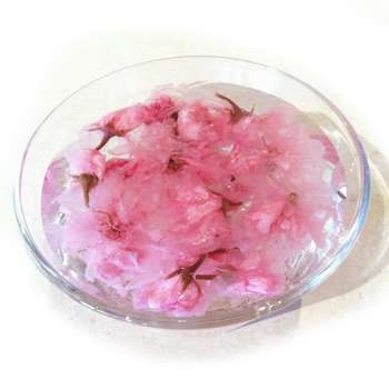 "Cherry Blossoms, Tea, and ""Mono No Aware"""