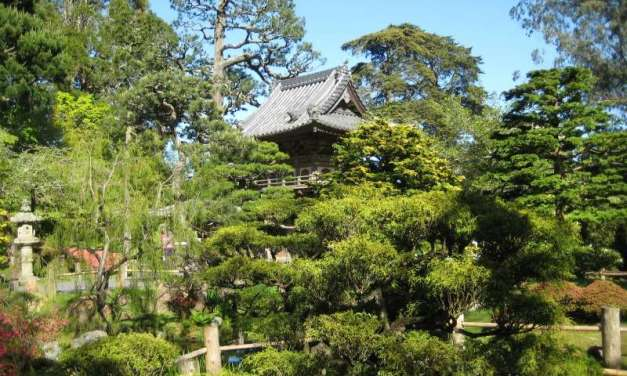 Two Japanese Gardens in Northern California